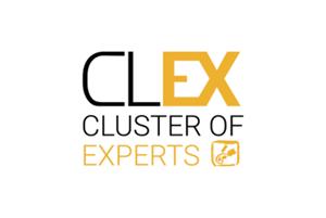 Icona CLEX-300x200