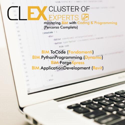 BIM - Coding & Programming (Percorso Completo) - Quadrata